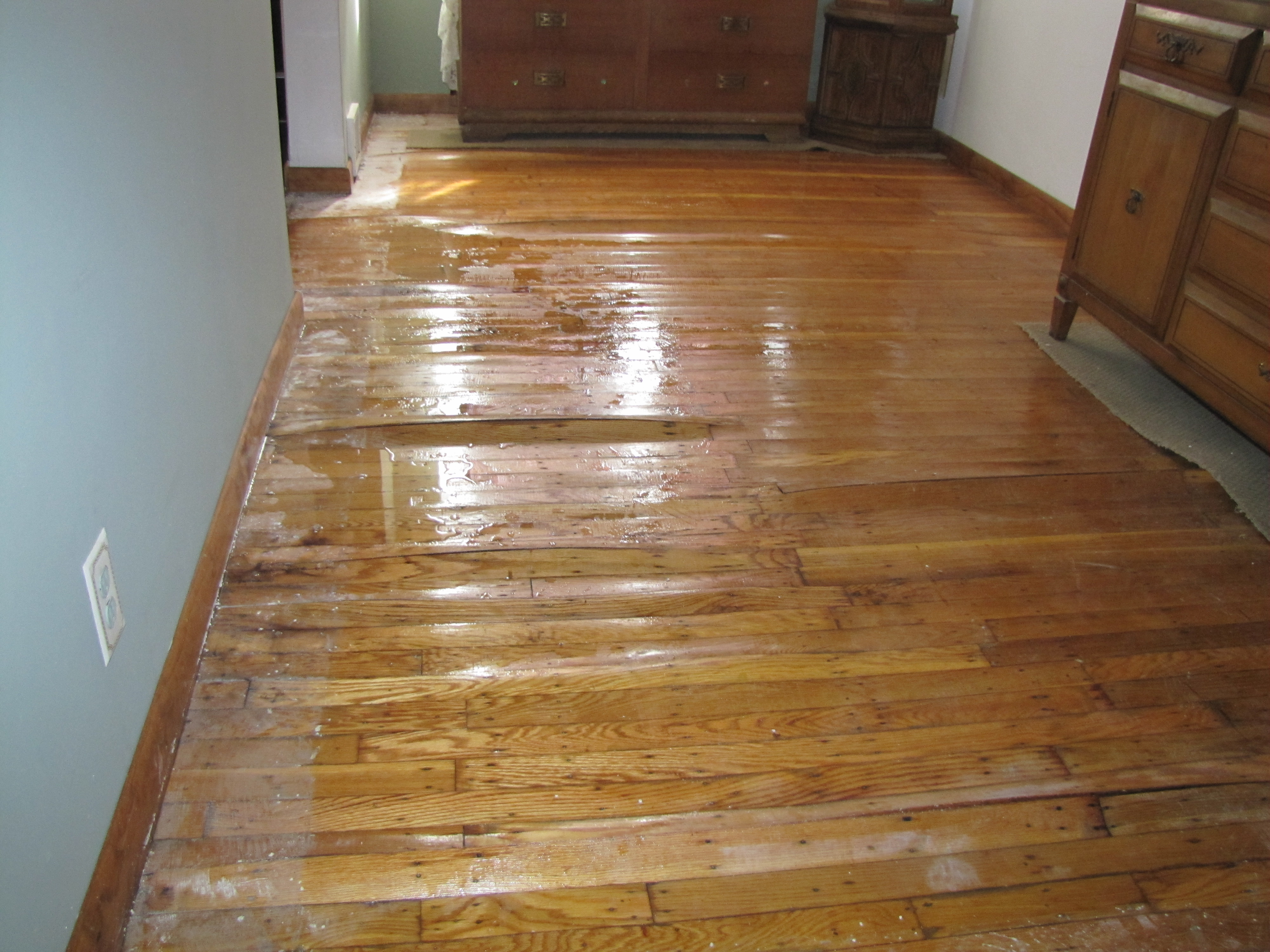 Buckled Floors Mold Solutions And Inspection Services